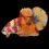 ca-betta-193-vip-koi-nemo-galaxy-size-lon (1)