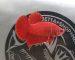 ca-betta-706-super-red-legendary-huyen-thoai-betta (6)